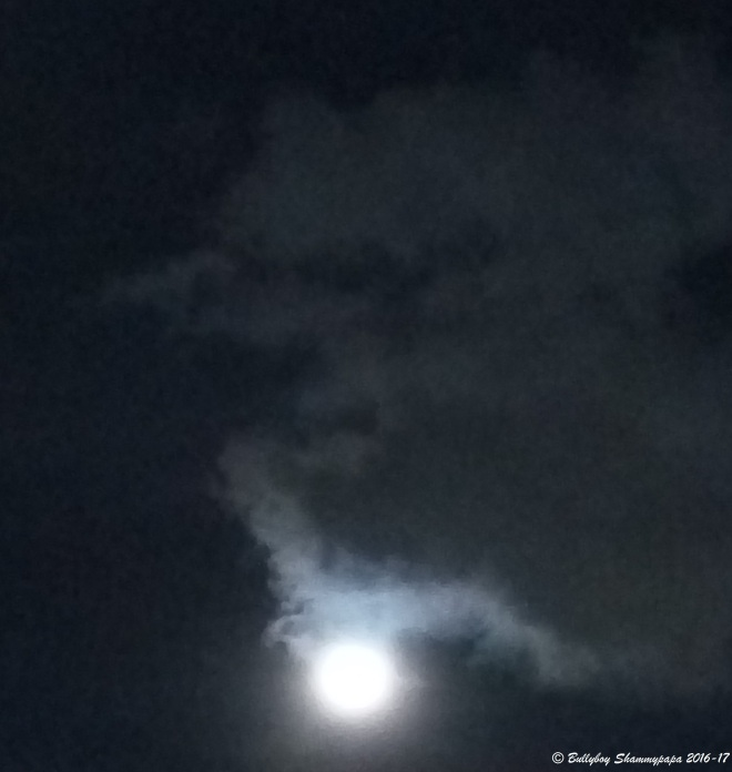 A picture of the shining moon in darkness