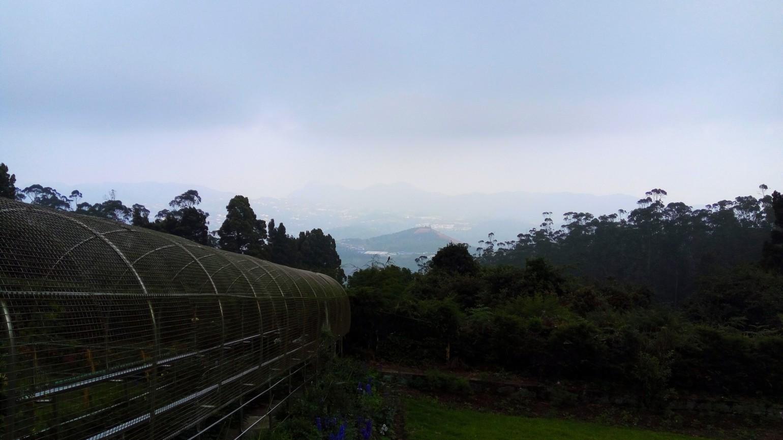 A view from Dodabetta peak