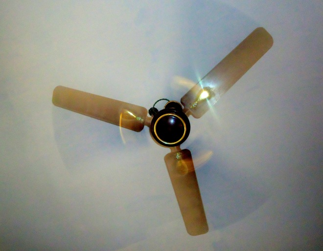Three or One? - A picture of a Ceiling Fan