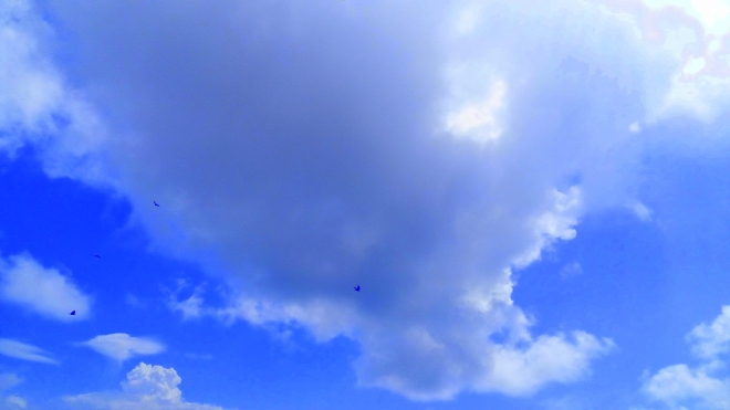 Sky is not the limit! - A glimpse of the color Indigo of the sky