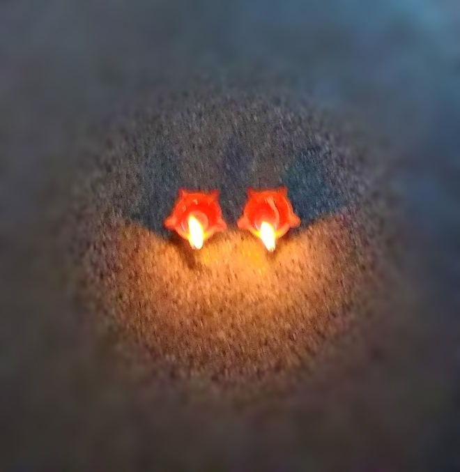 Two Lit-up Diyas