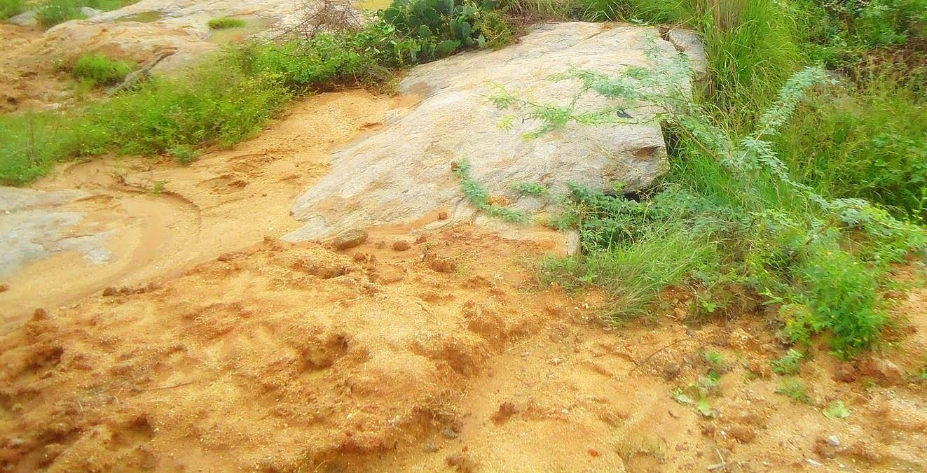 Sands on Plains - A view of a sandy plain