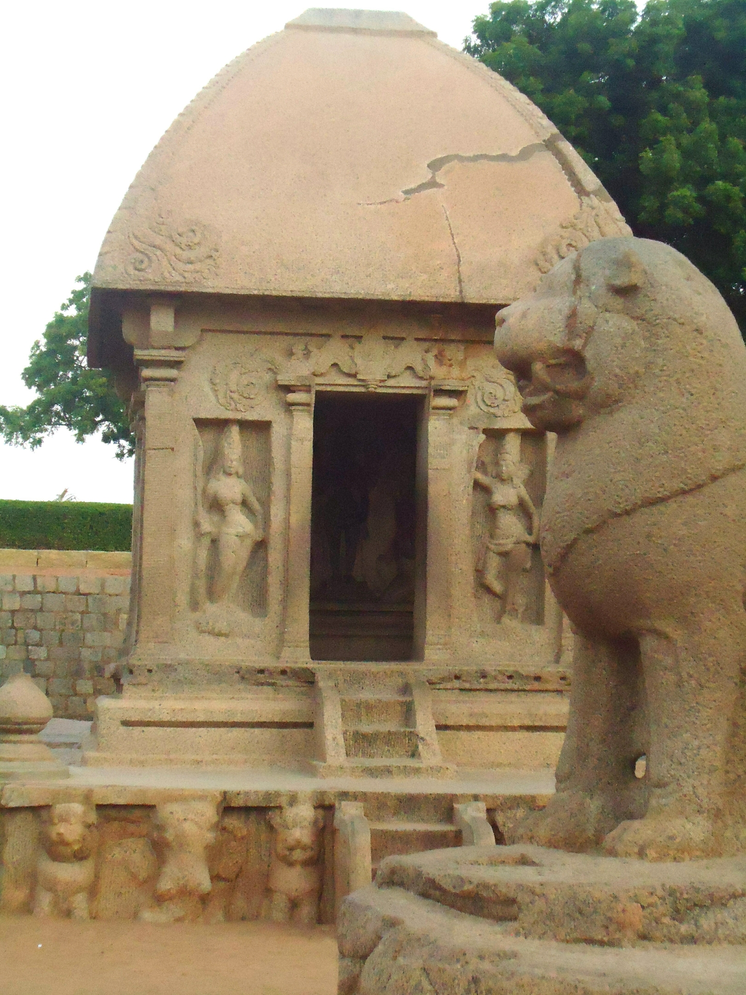Peek Inside - A shot of the Profile of the Monolithic Lion Sculpture against the background of one of the Pagodas at Mahabalipuram